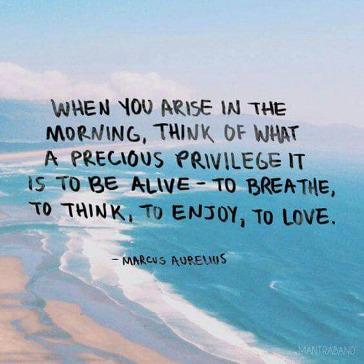 35 Inspirational Good Morning Quotes with Beautiful Images 14