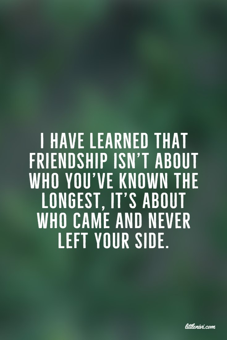 27 Friendship Quotes That You And Your Best Friends 3