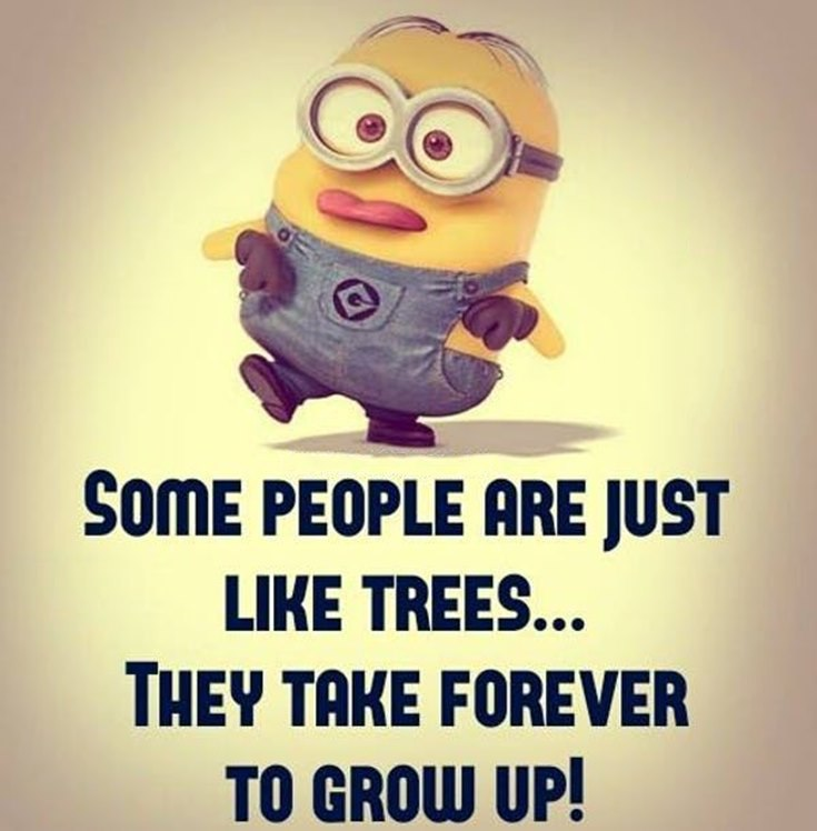 55 Funny Minion Quotes You Need to Read 21
