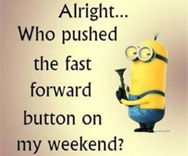 55 Funny Minion Quotes You Need to Read 25