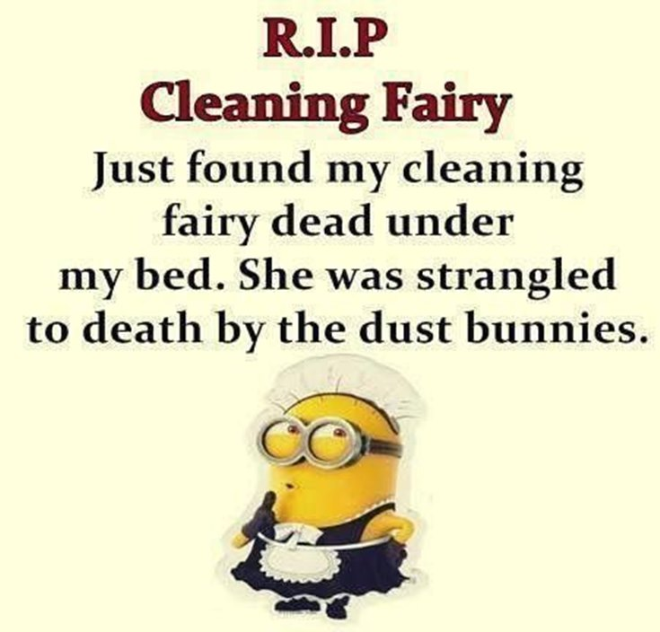 55 Funny Minion Quotes You Need to Read 28