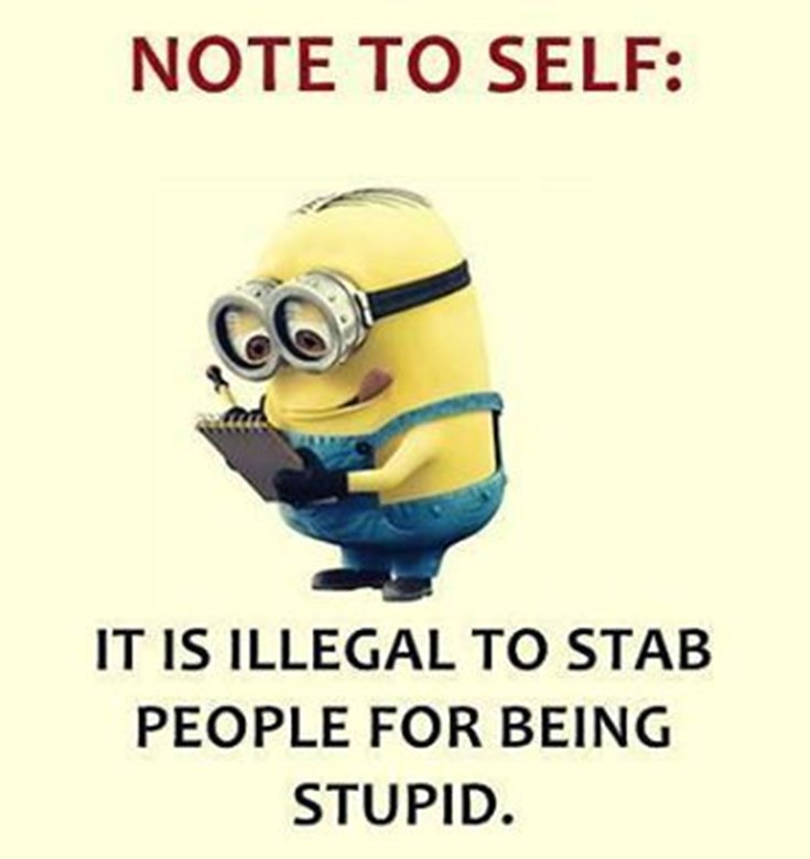 55 Funny Minion Quotes You Need to Read 46