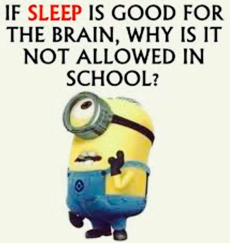 55 Funny Minion Quotes You Need to Read 55