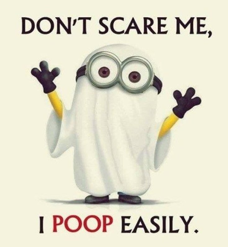 55 Funny Minion Quotes You Need to Read 9