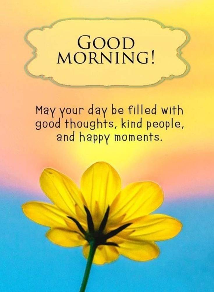 35 Amazing Good Morning Quotes and Wishes with Beautiful Images 16