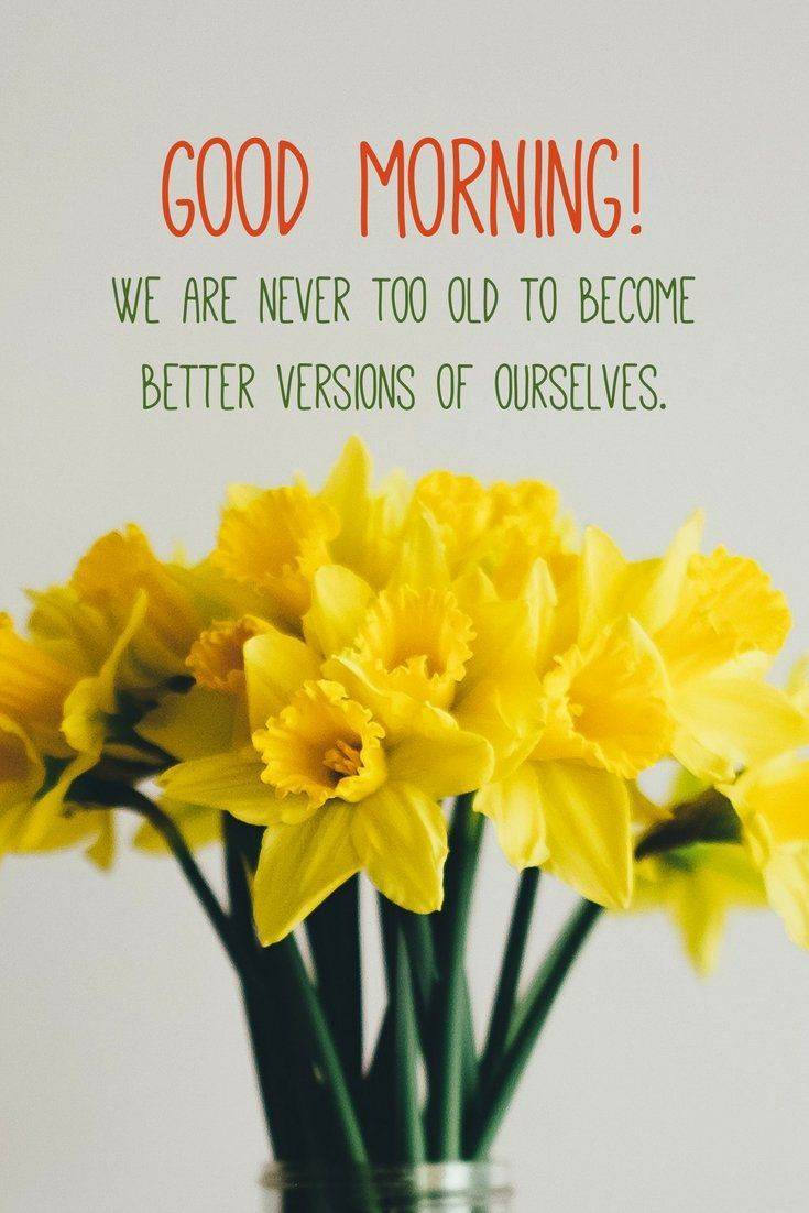 35 Amazing Good Morning Quotes and Wishes with Beautiful Images 21