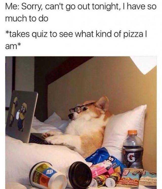 35 Hilarious Memes To Make You Laugh 5