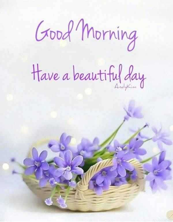 56 Good Morning Quotes and Wishes with Beautiful Images 22 1