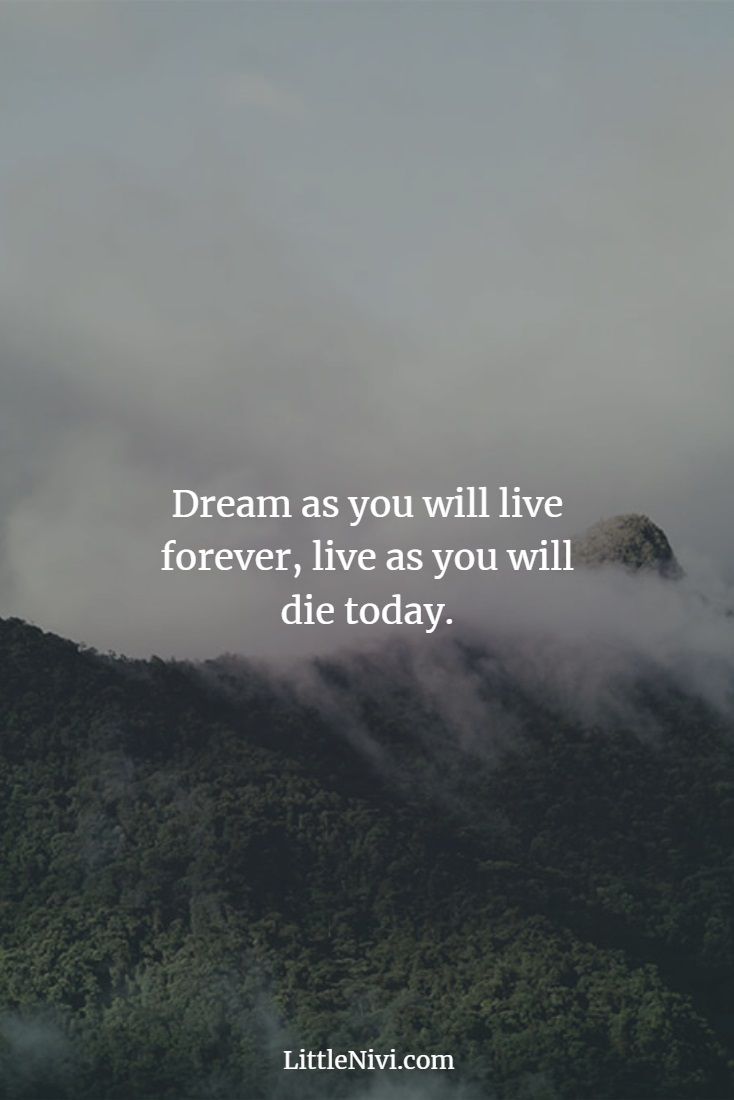Best Life Quotes Thatll Motivate You Great Sayings About Life