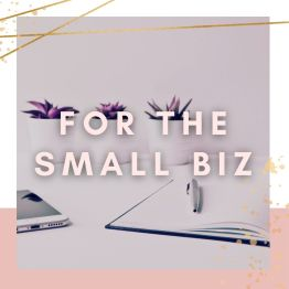 For Small Business Owners