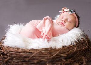 Newborn | Maine Newborn Photographer | Little Owls
