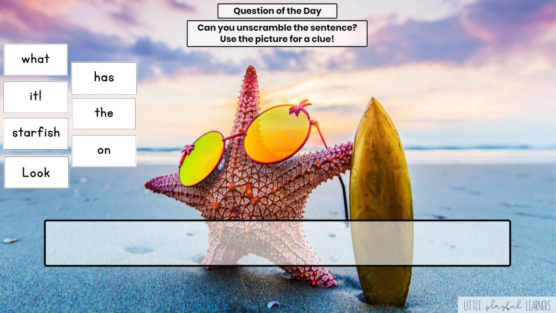 Seesaw: Sentence scramble - ocean theme