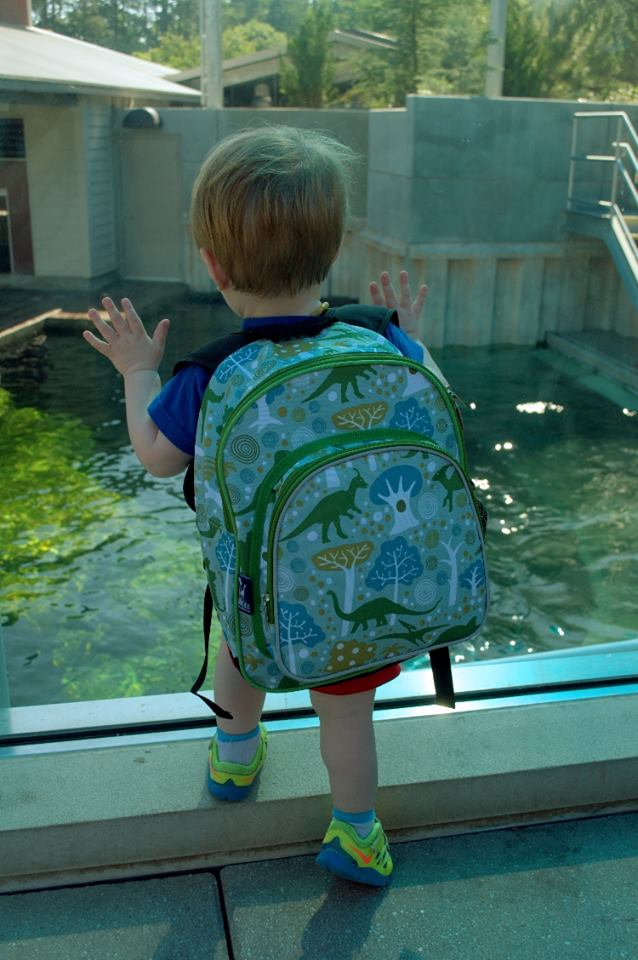 toddler at the zoo