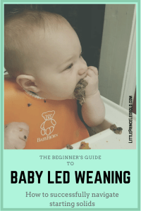 Baby led weaning guide