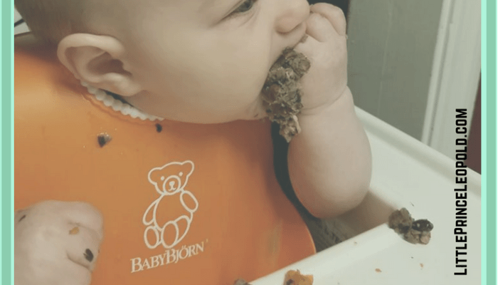 The Beginner's Guide to Baby Led Weaning