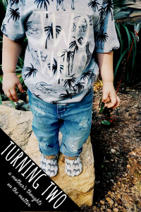 turning two-two years old-birthday outfit-toddler birthday party-freshly picked-