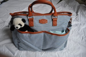 baby diaper bag-what to pack