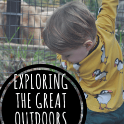 Exploring the Great Outdoors