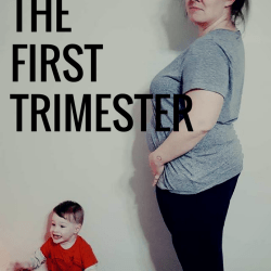 Baby Number Two, The First Trimester