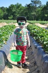 modern rascals-strawberry picking-duns sweden-kids clothes
