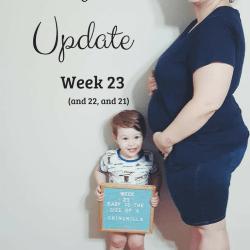 Baby Number 2 Update: Week 23