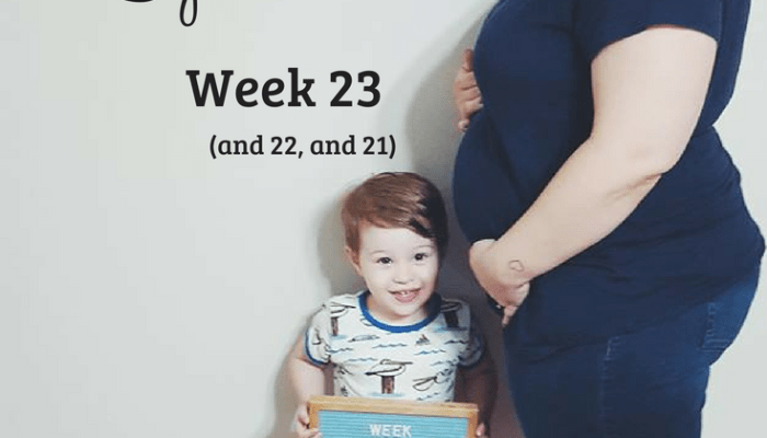 Baby Number 2 Update: Week 23
