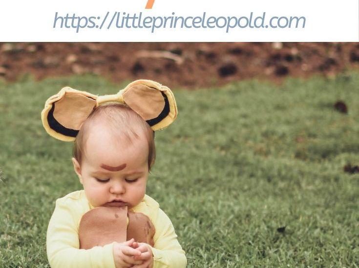 baby simba costume pinterest image