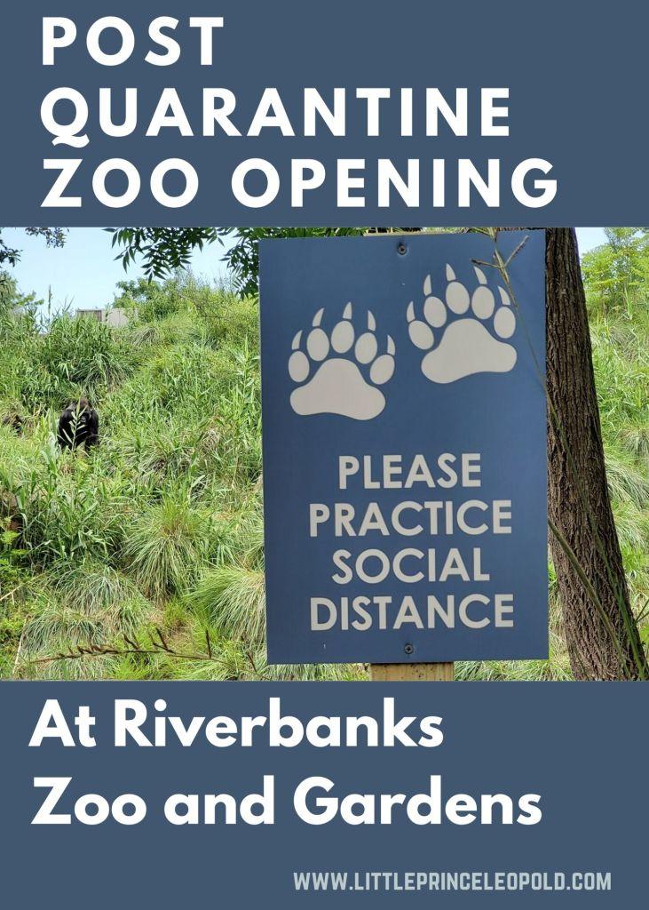 post quarantine zoo opening-social distancing- riverbanks-south carolina open
