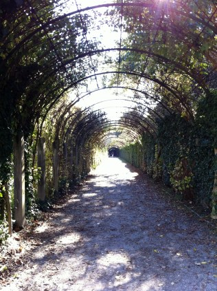 More hedge tunnels! Also a scene from Do Re Mi.