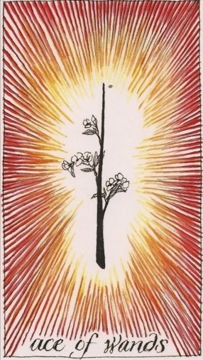 wands tarot Ace of Wands Wild Unknown