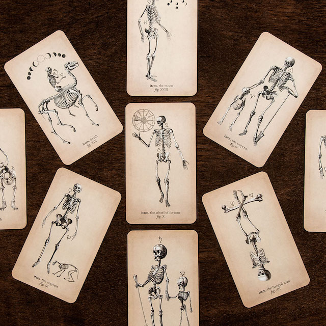 4. The Antique Anatomy Tarot by Claire Goodchild (Black And The Moon)