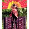 Lioness Oracle Tarot - The Sun