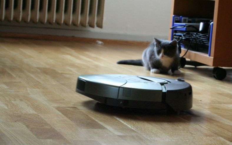 Pets love robot vacuums too