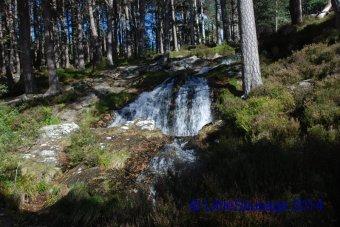 Finally a waterfall!