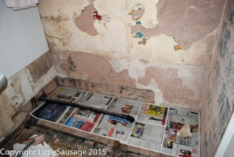 Remnants of some family of ducks painted on the plaster.
