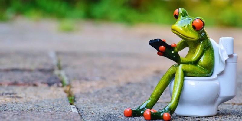frog potty training
