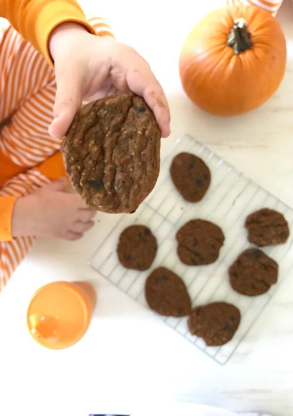 Pumpkin Chocolate Baby Booster Protein Cookies
