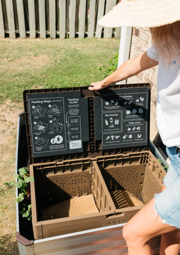 Composting 101 and why I decided to do it!