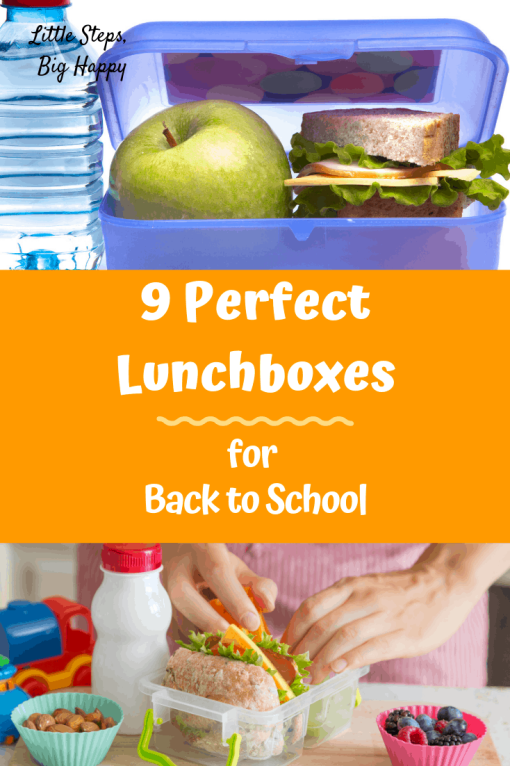9 Perfect Lunch Boxes and Bags for Back to School