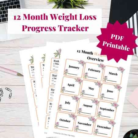 12 Month Weight Loss Tracker