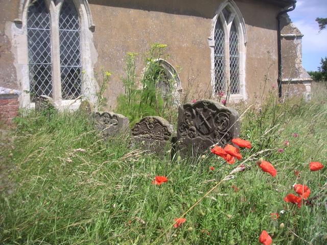 Church, Poppies