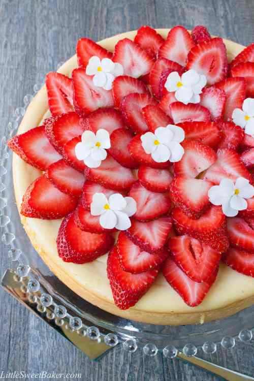 WHITE CHOCOLATE CHEESECAKE. A smooth creamy rich white chocolate cheesecake over a honey graham cracker hazelnut crust.