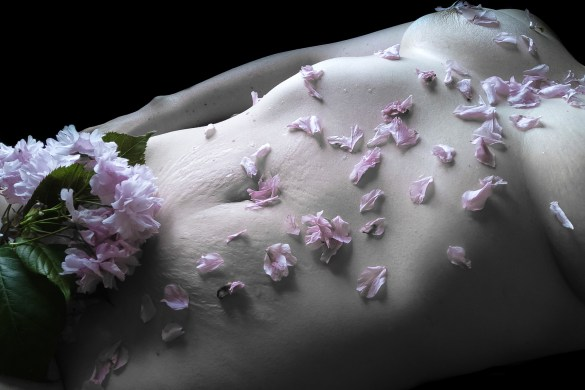 an image of me coveredin pink blossom flowers for sinful sunday