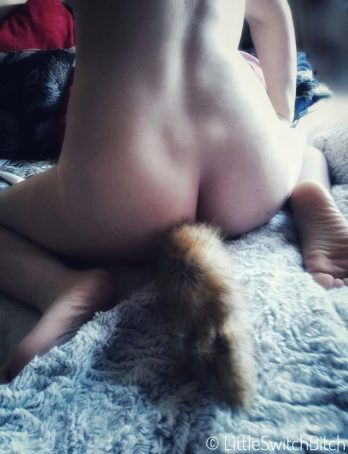an image of a woman wearing a tail butt plug tilted purr