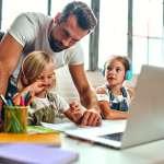 paysage de l'alentejo au portugal, champs d'oliviers