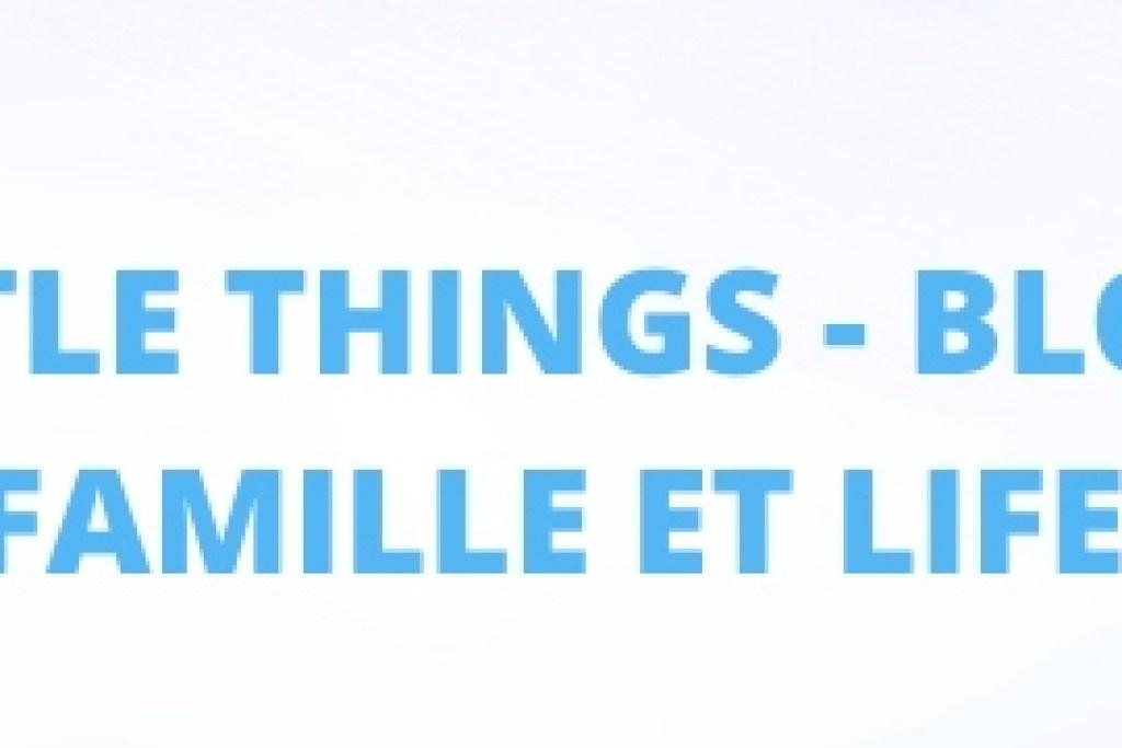 recette simple et gourmande de guinness pie à base de boeuf, légumes et biere. Recette irlandaise pour la saint patrick