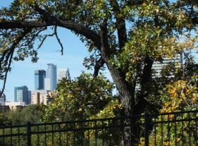 MINNEAPOLIS SKYLINE FROM ONE OF THE PARKS