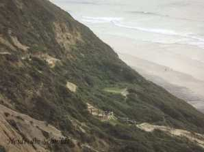 TRAIL TO BEACH