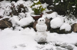 First snow of the season - 17 Jan