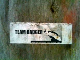 Vote Badger!